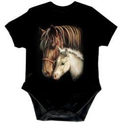 HORSES BODY